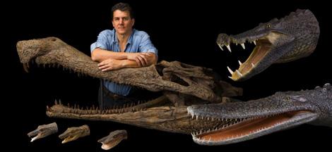 El explorador de National Geographic Paul Sereno rodeado de fósiles. | National Geographic