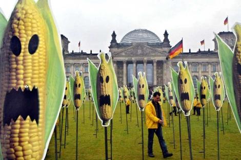 Campaña de Greenpeace contra los trasgénicos. | J. E.