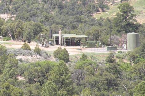 Zona boscosa elegida para el estudio plagada de ruidosas plantas de gas.| Clinton Francis