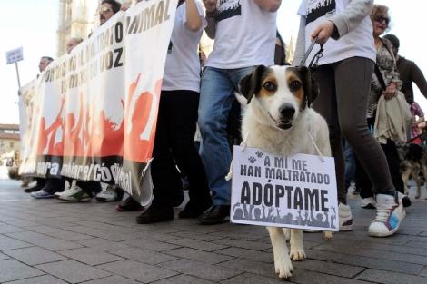 Los manifestantes en León fueron en compañía de sus mascotas.   Efe