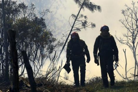 Los bomberos caminan por el bosque calcinado en A capela.| Afp