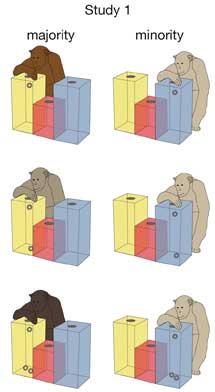 Representación de las diferentes opciones en uno de los ejercicios. | C.B.