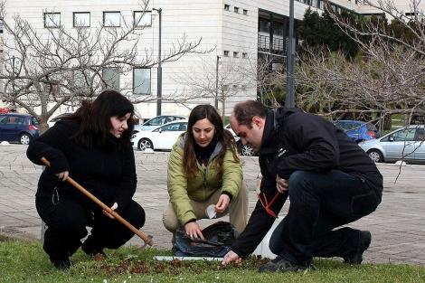 Los investigadores del LaboRA Jessica Avivar, Laura Ferrer y Antoni Borràs toman muestres de suelo en el campus de la UIB.