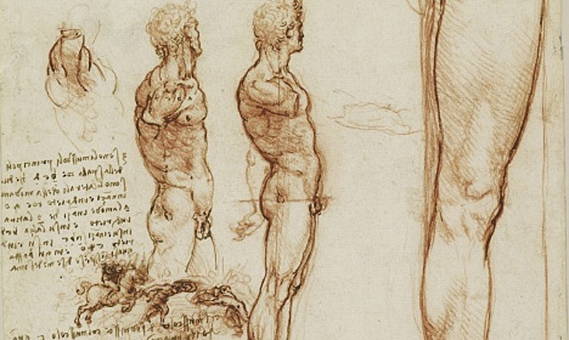 Uno de los bocetos del maestro florentino.
