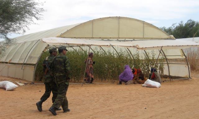 Agentes de la Gendarmería patrullan el campamento de Dajla. | Foto: R. Q.