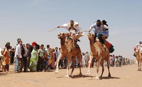 Carreras de camellos.