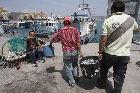 Pescadores de La Línea preparan sus aparejos y materiales para salir a faenar. | Efe