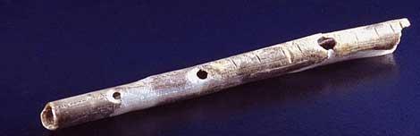 Flauta realizda con el hueso de un ave. | 'Journal of Human Evolution'