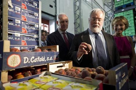 Arias Cañete comprueba el estado de la fruta en su visita a un banco de alimentos. | G. Arroyo