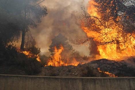 Uno de los incendios que azotaron Valencia el pasado mes de julio. | J. Cuellar