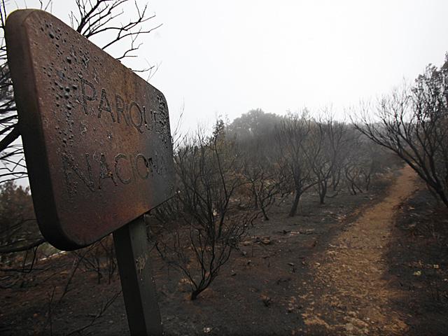 Cartel indicativo del Parque Nacional de Garajonay, arrasado por el fuego. | Afp