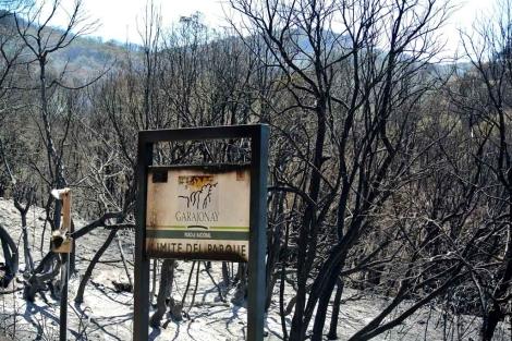 Terreno calcinado en el camino de Cabecitas a Laguna Grande. | Efe