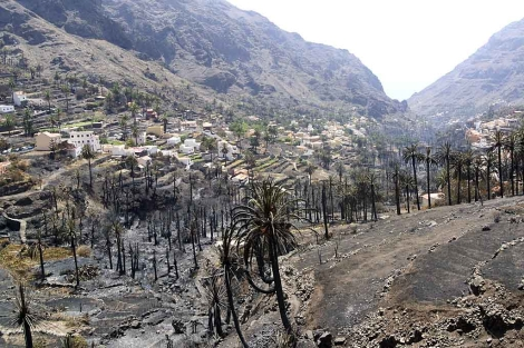 Zona carbonizada por el fuego en La Gomera. | Carlos Fernández / Efe