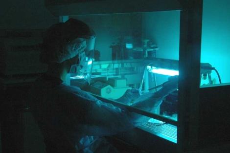 El laboratorio en el que se extrajo el ADN de los fósiles.   Max Planc Institute.
