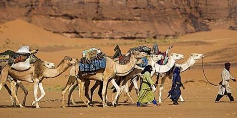 Tuaregs y camellos en el desierto de Libia.   Frank Lukassec