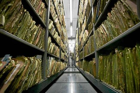 El archivo de la Stasi.| Afp