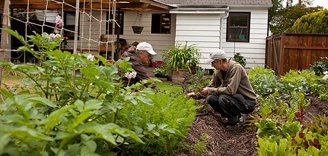 Donna Smith y Robyn Streeter, de Your Backyard Farmer, cultivando el huerto de un cliente. | Isaac Hernández