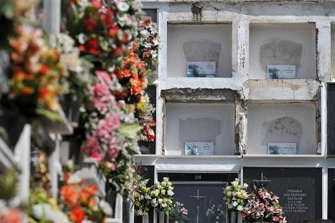 Varios nichos con los restos de inmigrantes muertos al tratar de llegar a España. | Jesús G. Hinchado