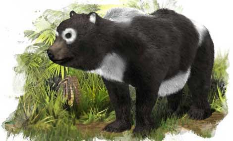 Recreación de 'Agriarctos beatrix' a partir de los fósiles hallados en Daroca (Zaragoza).  José Antonio Peñas SINC