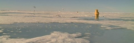 Imagen tomada por la web cam del Polo Norte en julio de 2010. | NOAA