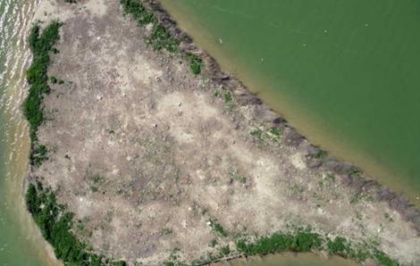 Imagen de la isla donde se ha hecho el seguimiento de las gaviotas. | F. Sarda-Palomera