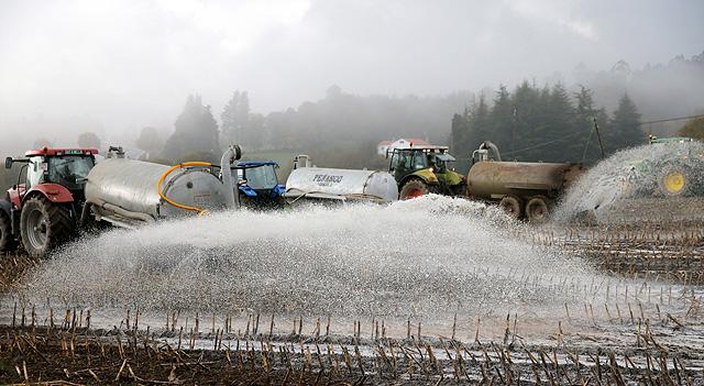 Ganaderos gallegos protestan derramando leche en el campo. | Efe