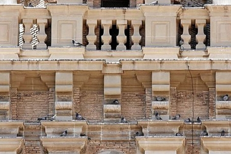 Fachada de un edificio 'tomada' por casi una veintena de palomas.   ELMUNDO.es