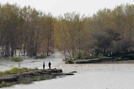 El río Ebro, desbordado a su paso por Castejón (Navarra). | Efe