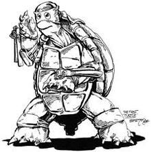 Primera tortuga, por Eastman.