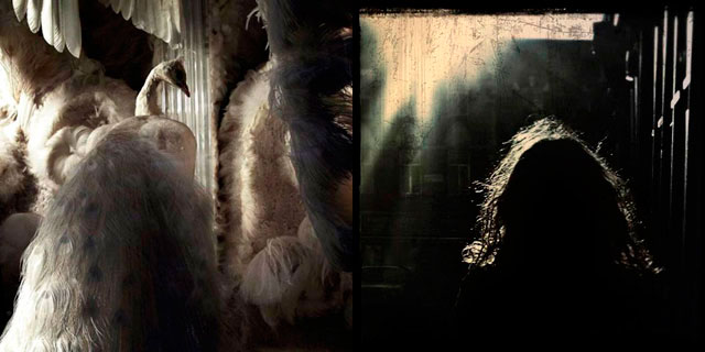 'A stage outside myself, the lure of the other' y 'Carne totalmente anochecida y amanecida'. | Ione Saizar [MÁS FOTOS]