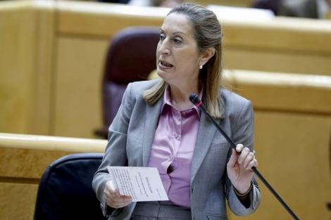 La ministra de Fomento, Ana Pastor, durante su comparecencia en el Senado.   Efe