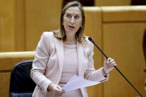 La ministra de Fomento, Ana Pastor, durante su intervención en el Senado.   Efe