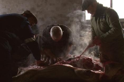 Imagen del documental 'Arribes: el resto es barullo'. | Zev Robinson