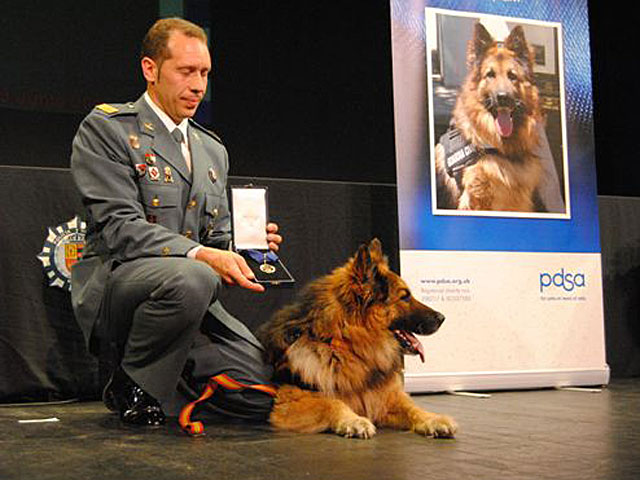Ajax, junto a su guía, después de la entrega de la Medalla de Oro de la People's Dispensary for Sick Animals. | Guardia Civil
