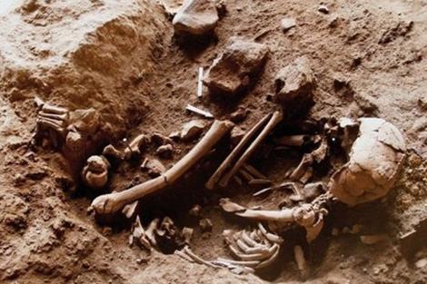 Restos encontrados en Cueva Raqefet (Israel). | Universidad de Haifa
