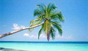 Ocholeguas, la web de viajes de Elmundo.es