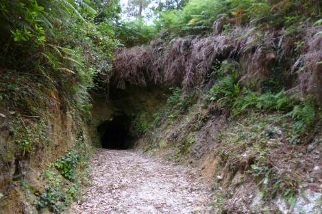 Estado actual de la antigua bocamina de la explotación situtada en Corcoesto.