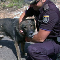 Iván Porcel saluda a su antiguo perro, Teo