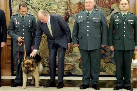 El Rey acaricia al perro Ajax durante una recepción a la Guardia Civil. | Efe