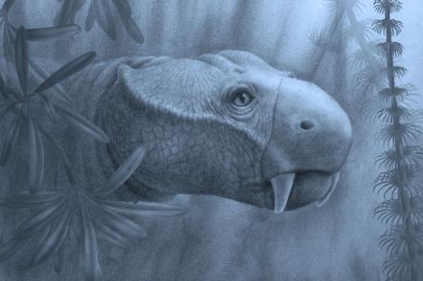 Reconstrucción de 'Dicynodon lacerticeps', que vivió durante el Pérmico.  Marlene Donnelly.
