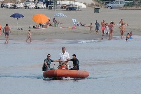 Miembros del Seprona intentan espantar al animal mar adentro. | AM
