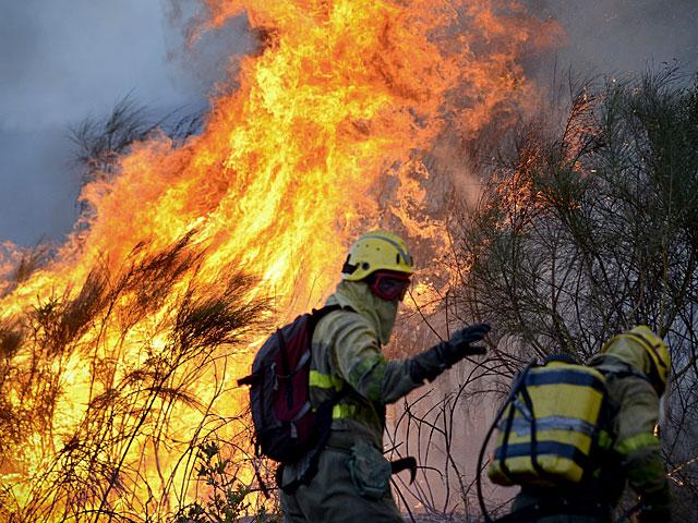 Varios brigadistas durante la extinción de un incendio en Monterrey (Ourense). | Efe
