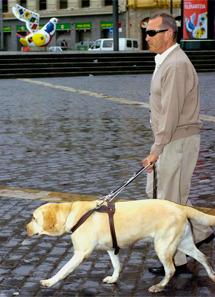 Un invidente con su perro. | Efe