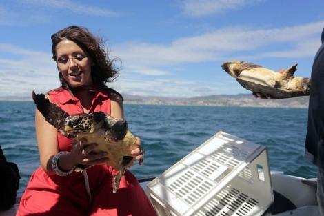 La diputada provincial de Medio Ambiente con una tortuga. | Carlos Díaz