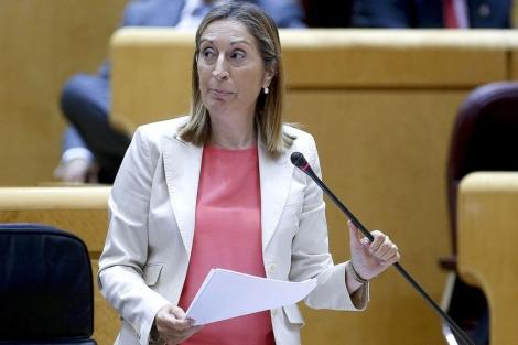 La ministra de Fomento, Ana Pastor. | Efe