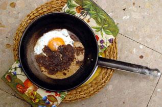 http://www.metropoli.com/blogs/cuadernomatoses/2015/10/02/paco-gandia-el-arroz-convertido-en-mito.html