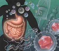 Como curar virus estomacal