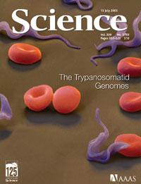 Portada del número de 'Sience' donde se publican los tres genomas. La imagen muestra ejemplares de 'Trypanosoma brucei' (azul) entre glóbulos rojos.
