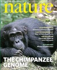 Portada de la revista 'Nature' donde se publica el borrador de la secuenciación del genoma del chimpancé. (Foto: 'Nature')