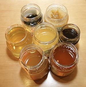 Distintas clases de miel. (Foto: Quique Fidalgo)